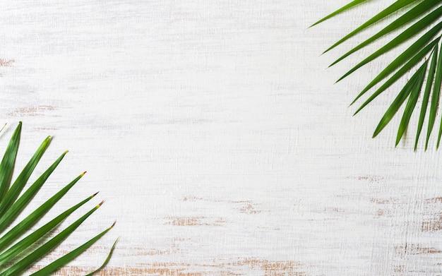 Hojas de palma tropicales de la naturaleza verde en el fondo de madera blanco del grunge.