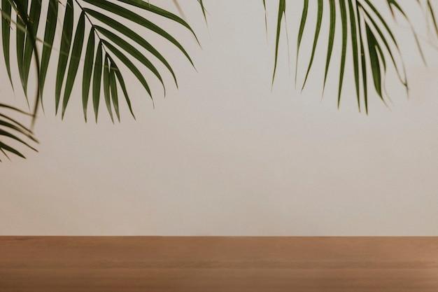 Hojas de palmera verde junto a la pared