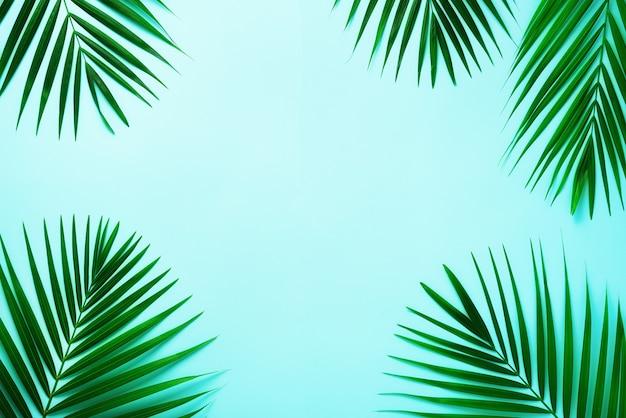 Hojas de palmeras tropicales. concepto de verano mínimo. vista superior de la hoja verde sobre papel de colores pastel pegajosos.