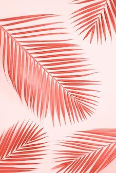 Hojas de palmeras tropicales sobre fondo amarillo pastel.