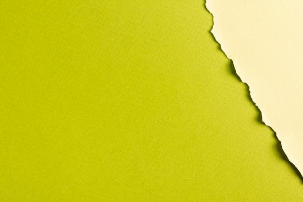 Hojas de papel en tonos verdes con espacio de copia