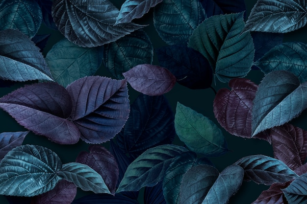 Hojas de plantas azuladas con textura