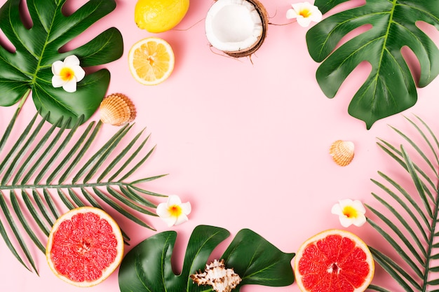 Hojas de plantas tropicales y frutos.