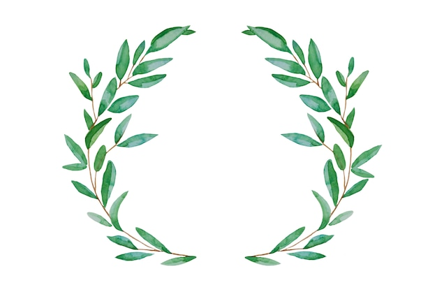 Hojas de primavera verde corona de acuarela. pascua dibujada a mano, hojas verdes de verano aisladas.