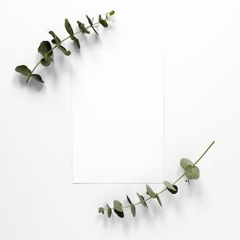 Hojas de ramas con hoja de papel en blanco