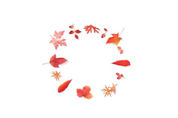 Hojas rojas de otoño aisladas en la superficie blanca