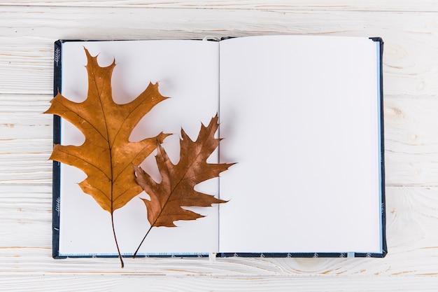 Hojas secas en el cuaderno en blanco en la mesa