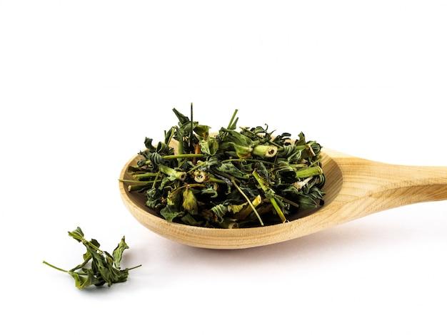 Las hojas secas de hierba de san juan yacen en una cuchara de madera sobre un blanco
