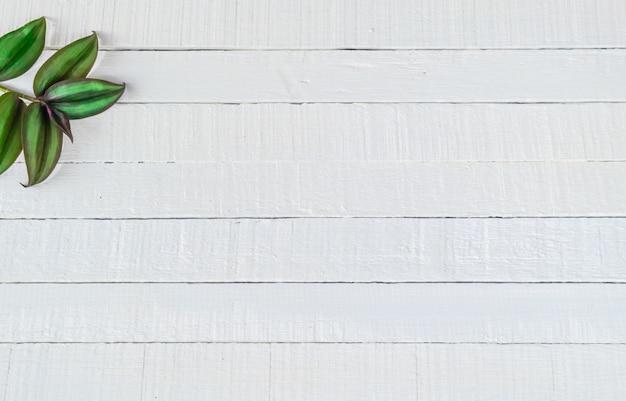 Hojas sobre un fondo de madera