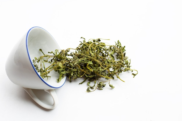 Hojas de stevia secas en blanco