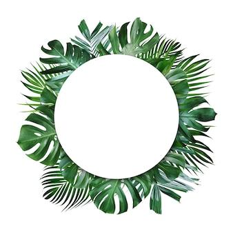 Hojas tropicales de verano y marco en blanco con espacio de copia