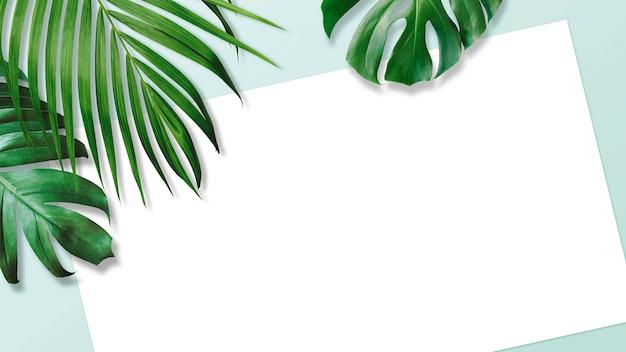 Hojas tropicales de verano con papel blanco en blanco