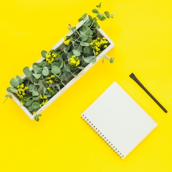 Hojas verdes en caja rectangular; bloc de notas de espiral y pluma sobre fondo amarillo