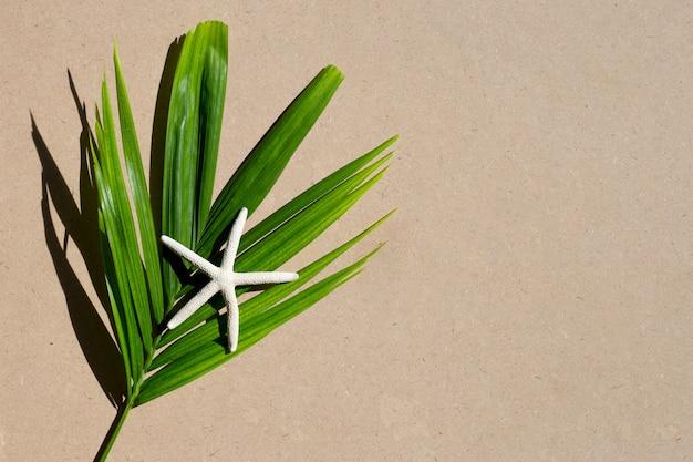 Hojas verdes con estrellas de mar sobre fondo marrón. disfrute el concepto de vacaciones de verano. copia espacio