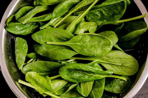 Hojas verdes frescas de acedera en un colador