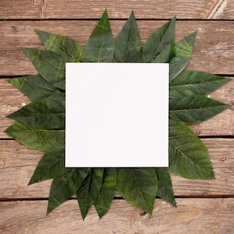 Hojas verdes sobre fondo de madera con marco en blanco