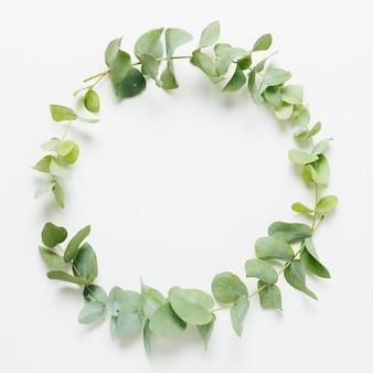 Hojas wreathe sobre fondo blanco