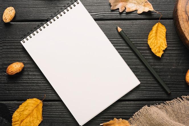 Hojas y tela alrededor de papelería