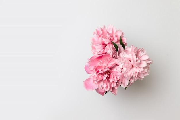Hola primavera. flores de primavera en florero