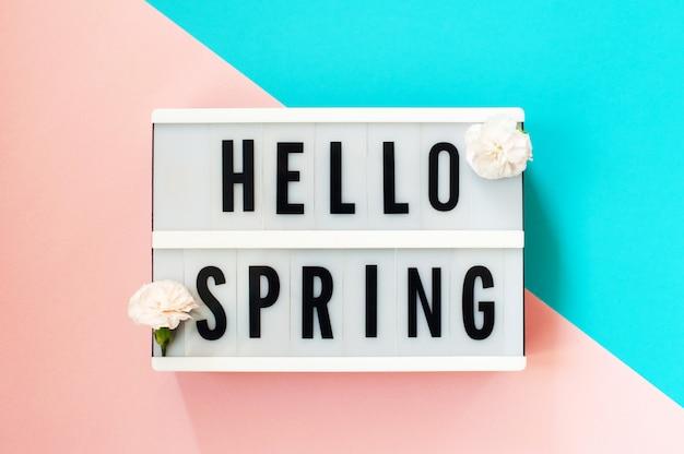 Hola primavera: texto en una caja de luz con claveles en azul y rosa.