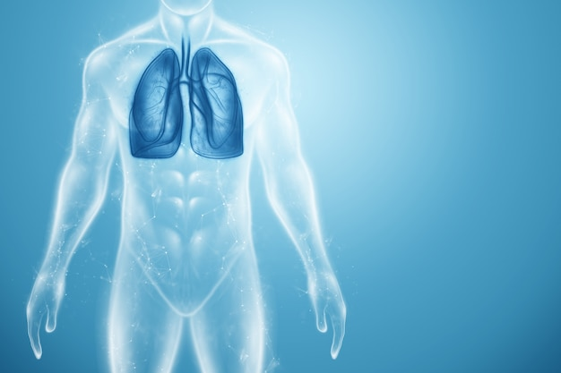 Holograma de pulmones inflamados en el cuerpo humano.