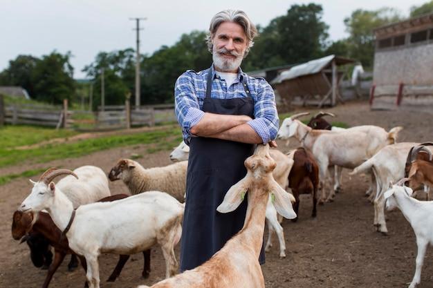 Hombre de ángulo bajo alimentando cabras