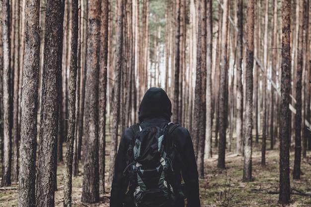 El hombre del backpacker mira salida del sol en un bosque del pino. vista trasera. copia espacio entonado