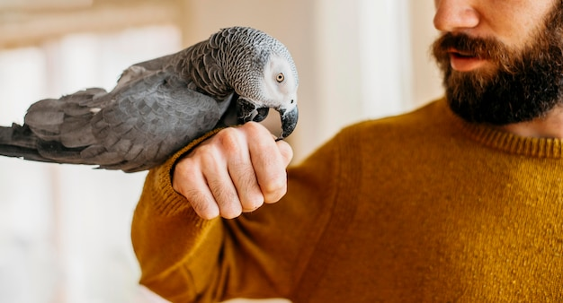 Hombre barbudo acariciando lindo pájaro