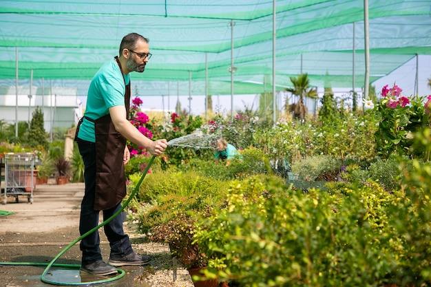 Hombre barbudo sosteniendo la manguera, de pie y regando las plantas. colega borrosa irreconocible creciendo flores. dos jardineros vestidos de uniforme y trabajando en invernadero. actividad de jardinería y concepto de verano.