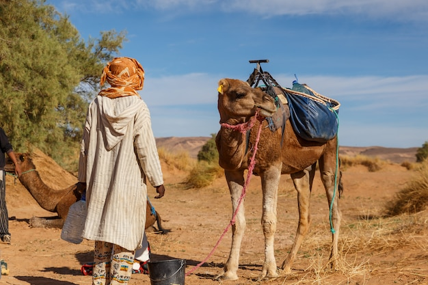 Hombre bereber en traje nacional se encuentra cerca de un camello
