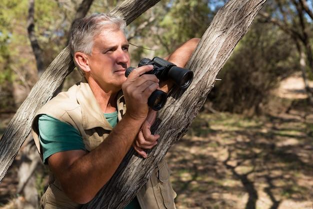 Hombre con binoculares por árbol