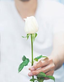 Un hombre da rosa blanca.