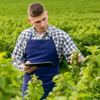 Hombre en la granja con tableta