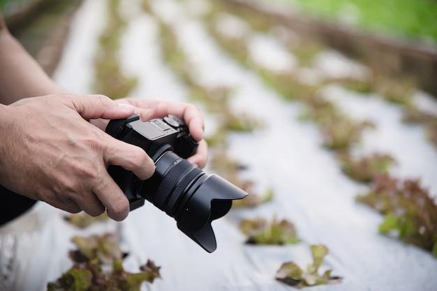 Hombre de granja trabajando en su huerto de lechugas orgánicas