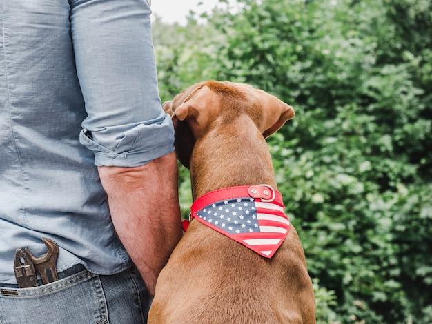 Hombre guapo, adorable cachorro y bandera estadounidense. vista desde atrás, primer plano.
