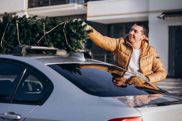 Hombre guapo cargando árbol de navidad en coche