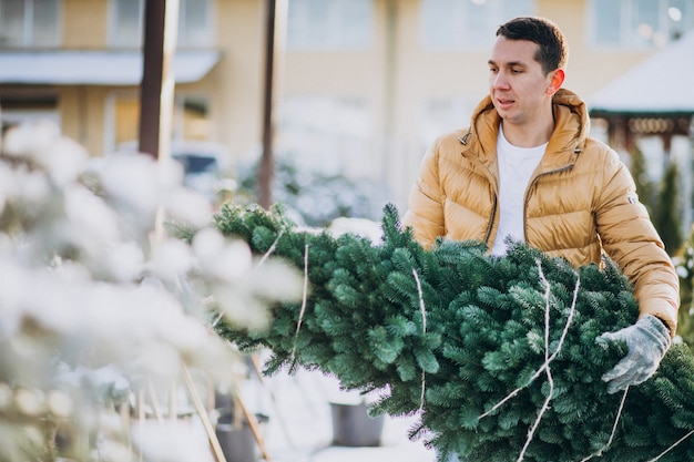 Hombre guapo eligiendo un árbol de navidad en un invernadero