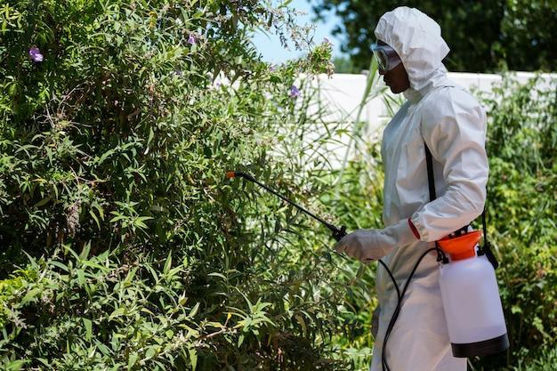 Hombre haciendo control de plagas
