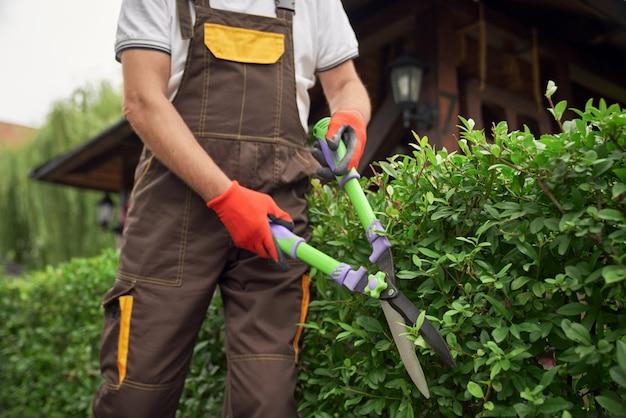Hombre de incógnito cortando arbustos descuidados.