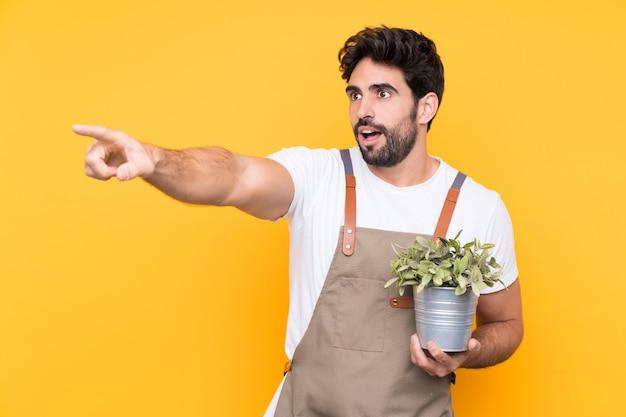 Hombre jardinero con barba sobre pared amarilla aislada apuntando con el dedo al lado
