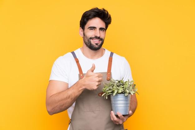 Hombre jardinero con barba sobre pared amarilla aislada dando un gesto de pulgares arriba