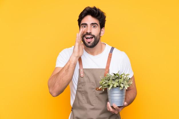 Hombre jardinero sobre pared amarilla aislada