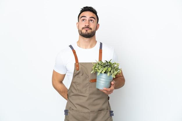 Hombre jardinero sosteniendo una planta aislada sobre fondo blanco y mirando hacia arriba