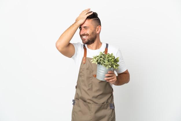 Hombre jardinero sosteniendo una planta sobre fondo blanco aislado se ha dado cuenta de algo y tiene la intención de la solución