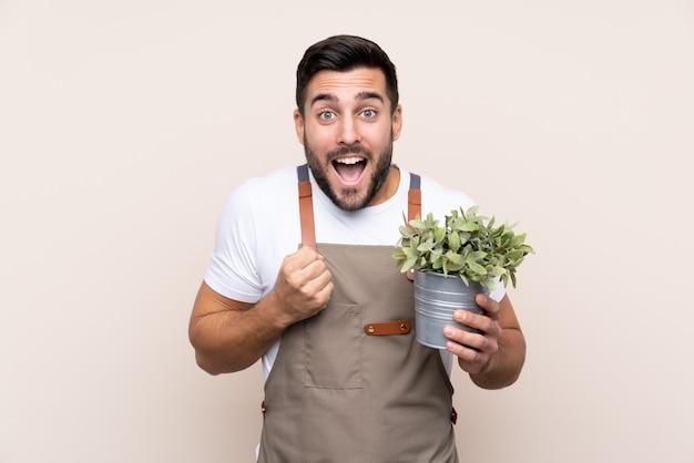 Hombre jardinero sosteniendo una planta sobre pared aislada con cara feliz
