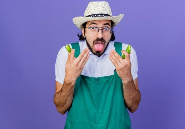 Hombre joven jardinero barbudo vestido con mono y sombrero sosteniendo mitades de ají verde sacando la lengua sintiendo que le quema en la boca