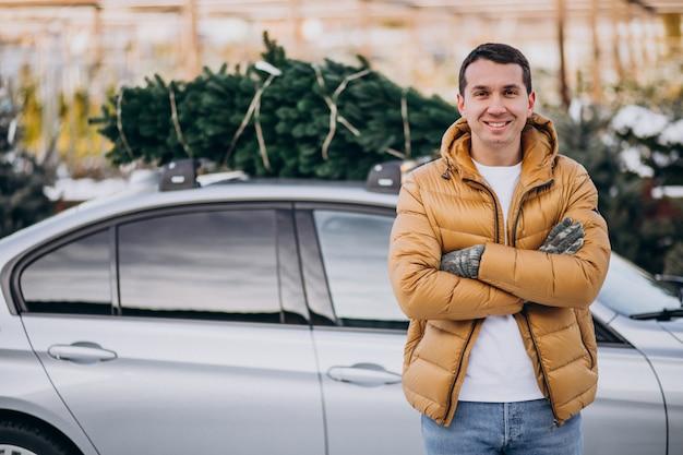 Hombre joven que entrega el árbol de navidad en el coche