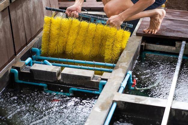 El hombre limpia el sistema de filtrado de estanques de peces para mantener peces saludables, proporcionando un medio para eliminar sustancias nocivas y mejorar la calidad general del agua