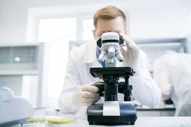 Hombre mirando el microscopio en laboratorio