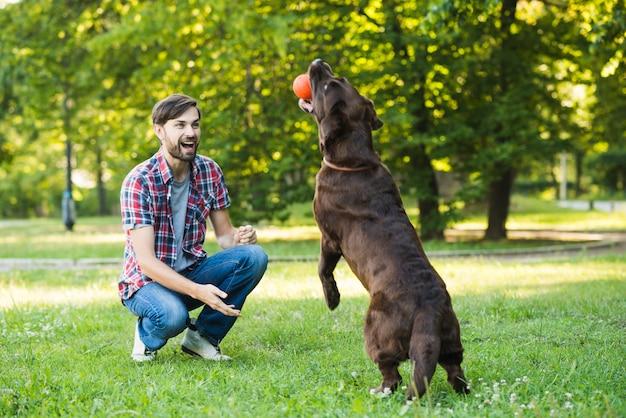 Hombre mirando a su perro sosteniendo la pelota en la boca